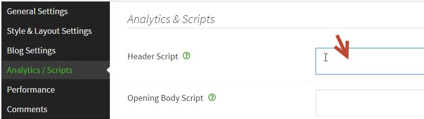 theme_options_header_scripts